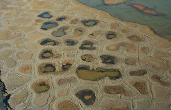 Permafrost Patterns