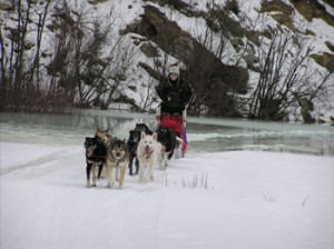 dog mushing water overflow