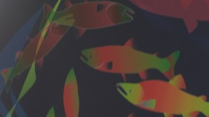 Salmon Art for FISH Supercomputing