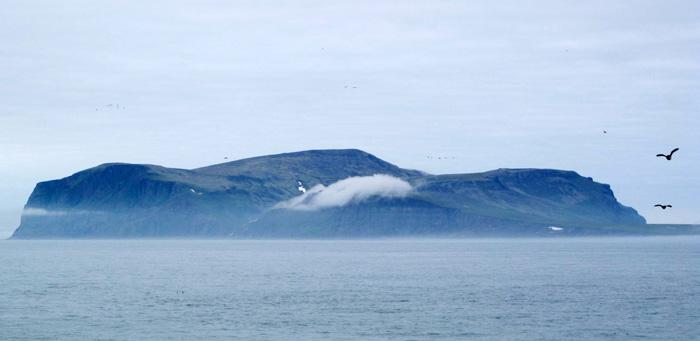 Birds Hall Island Alaska