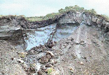 permafrost ice wedge