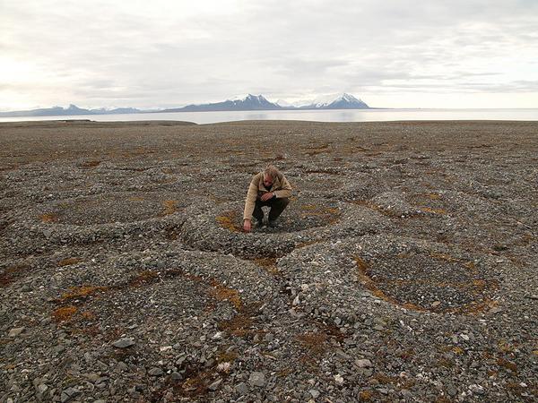 permafrost stone rings Svalbard Norway
