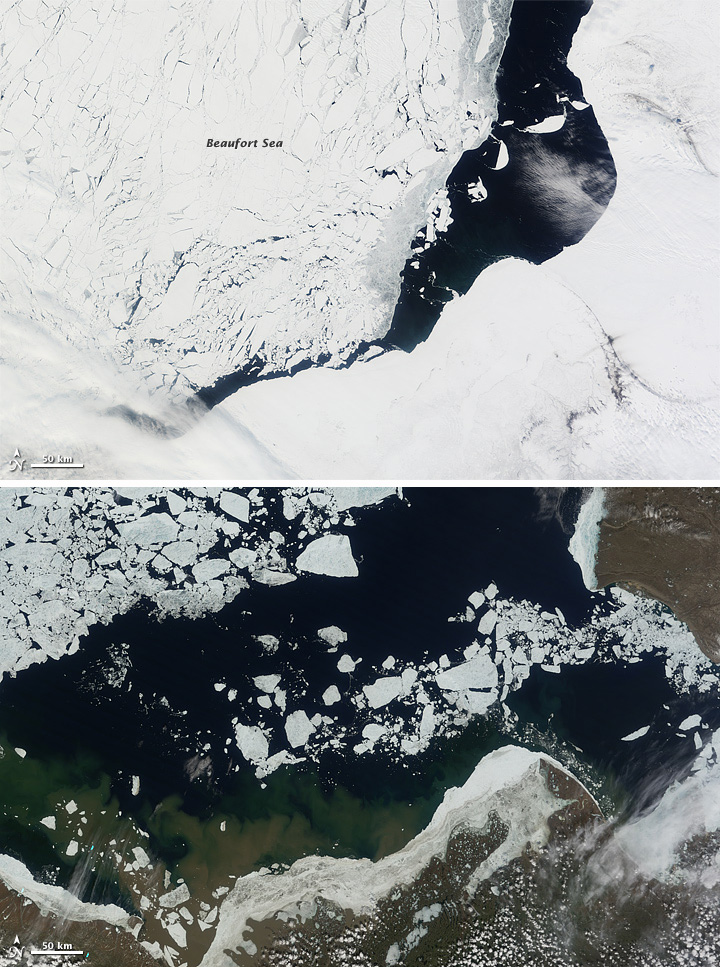 Beaufort sea ice retreat