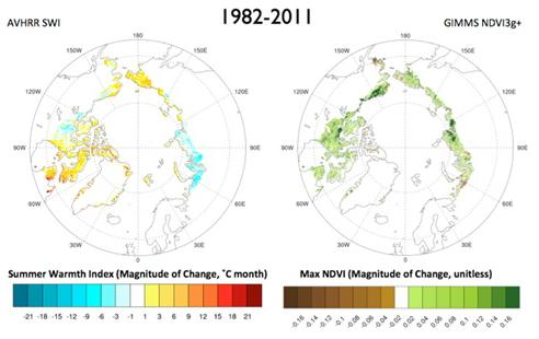 Arctic temperature & vegetation
