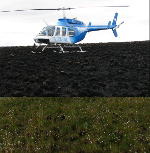 helicopter wildfire burn plant recovery
