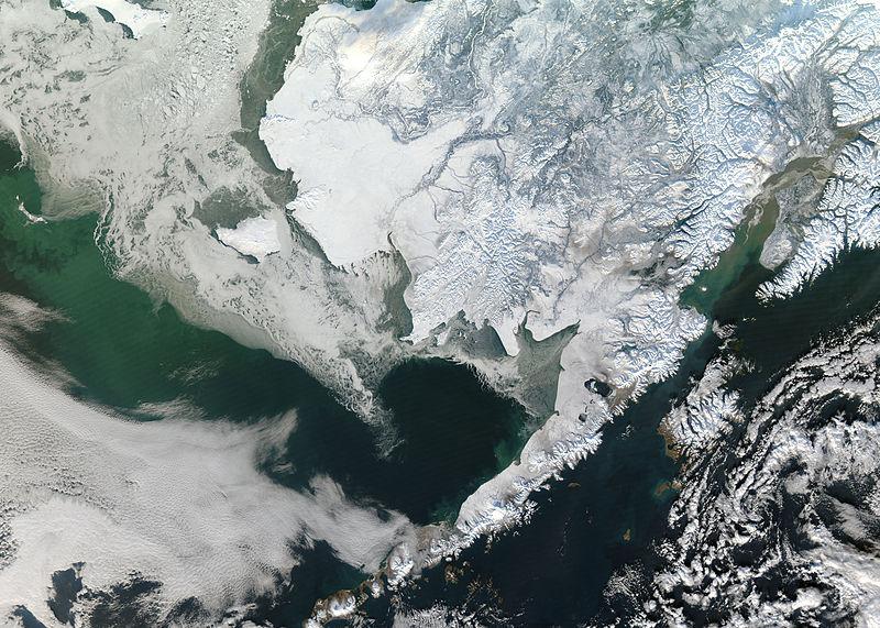 snow covered Alaska satellite image