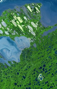 This image of Alaska's North Slope acquired August 15 2000 by NASA's Terra satellite shows a false color lake-dotted expanse of tundra, with the Beaufort Sea at the top and Lake Teshekpuk at the lower-left. The image covers an area of 36.5 by 55.8 miles [58.7 by 89.9 kilometers]. In 2006, the U.S. Department of the Interior approved oil and gas drilling on approximately 500,000 acres of land in and around Teshekpuk Lake. The Advanced Spaceborne Thermal Emission and Reflection Radiometer image centered near 70.4 degrees North latitude, 153 degrees West longitude shows vegetation as green and water as blue. / Image courtesy NASA/GSFC/METI/ERSDAC/JAROS, and U.S./Japan ASTER Science Team