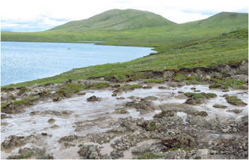 Thermokarst: Melting Permafrost at Wolverine Lake