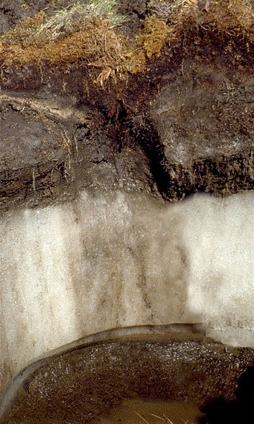 Permafrost ice wedge / Courtesy John A. Kelley, USDA Natural Resources Conservation Service