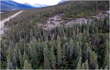 Frozen Debris Lobes approach Alaska Haul Road