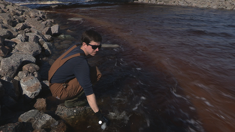 Dobkowski sampling brown water