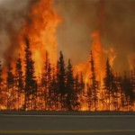 Wildfire blazes in a black spruce stand / Courtesy AlaskaDNRDOF and BLM Alaska Fire Service