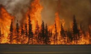 Wildfire_BlackSpruceHighwayFlames.jpg