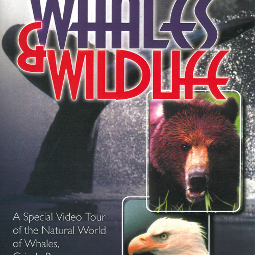 Alaska's Whales and Wildlife DVD