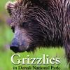 Grizzlies in Denali National Park Preserve DVD