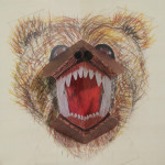 FrontierScientistsDVD_GrizzlyPopUpResting