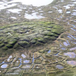 Lines and polygons in permafrost