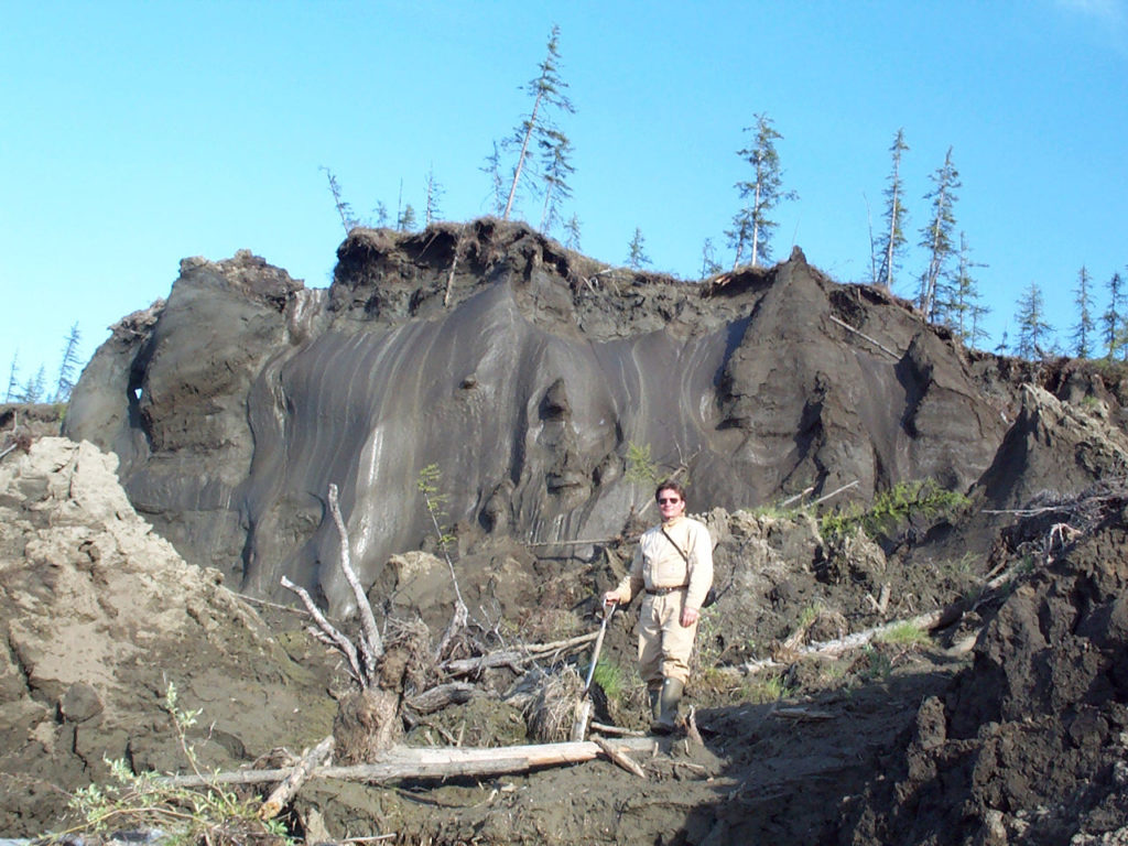 Vladimir Romanovsky in front of huge ice wedges in permafrost on an arctic riverbank.