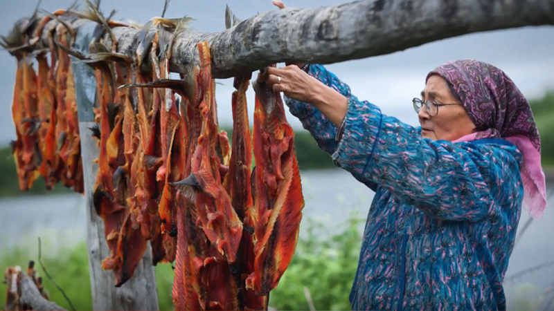 Subsistence living Native ways process dry smoke fish Alaska Mishler