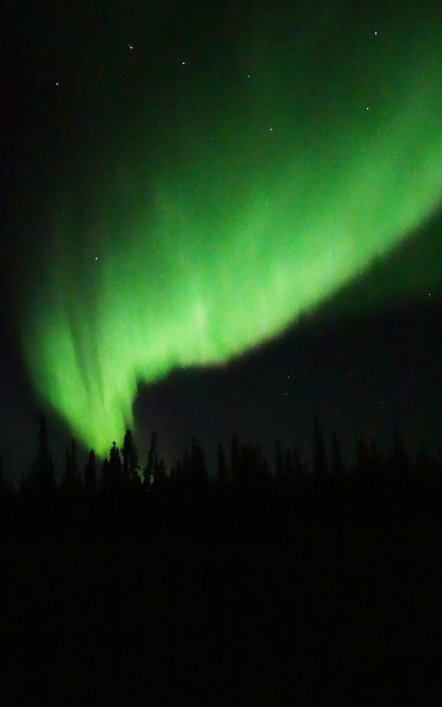 Aurora Borealis over a Yukon Flats island in early October. / Photo by Ned Rozell