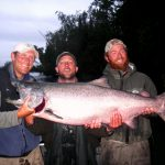 King Salmon On the Kenai 1984 to 2018 & videos