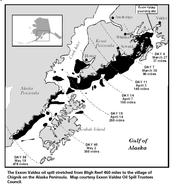 Map of oiled areas in nearshore waters along Alaska's coast in Prince William Sound. / Courtesy Exxon Valdez Oil Spill Trustee Council